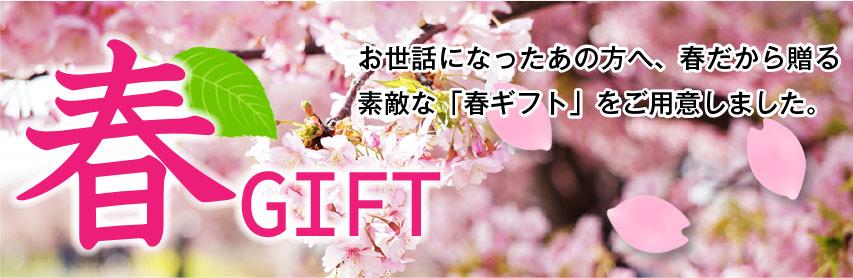 春ギフトセット