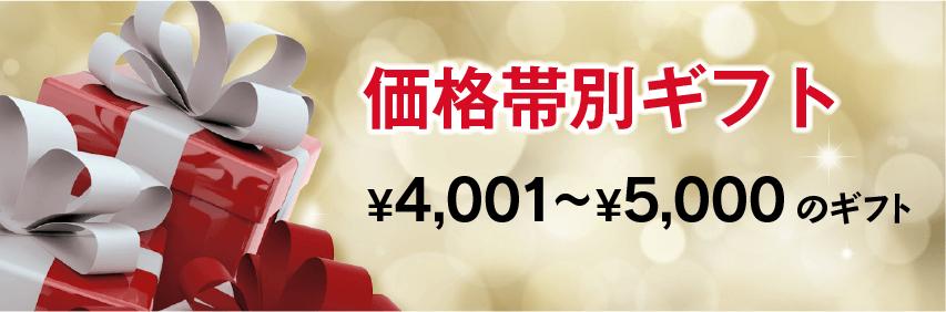 ¥4,001〜¥5,000のギフトセット